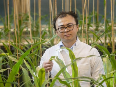 Dr. Peng Yu from the Institute of Crop Sciences and Resource Conservation (INRES) at the University of Bonn. © Barbara Frommann/University of Bonn